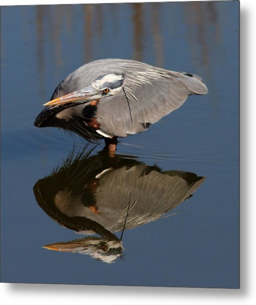 Concentration Metal Print by Phil Lanoue