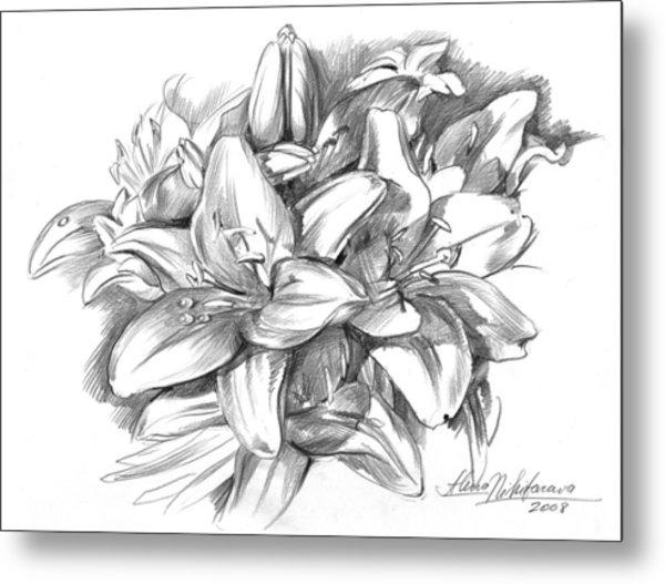 Conte Pencil Sketch Of Lilies Metal Print