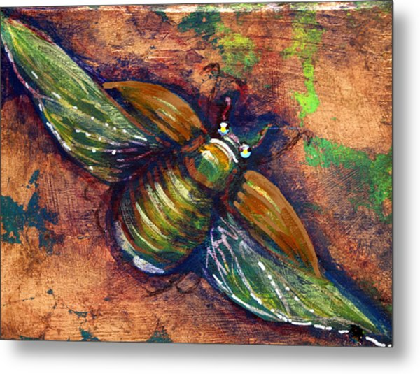 Copper Beetle Metal Print