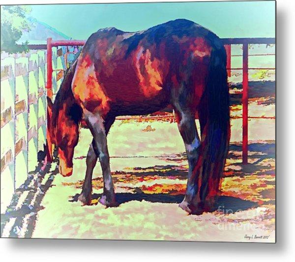 Corraled Horse Metal Print
