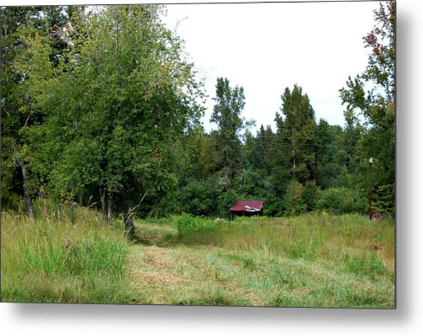 Country Metal Print by Beverly Hammond