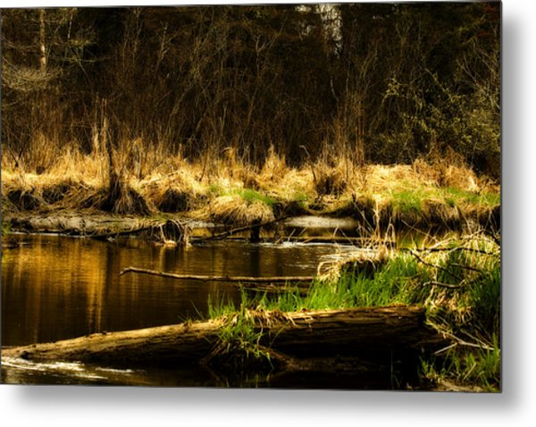 Country River Metal Print by Gary Smith