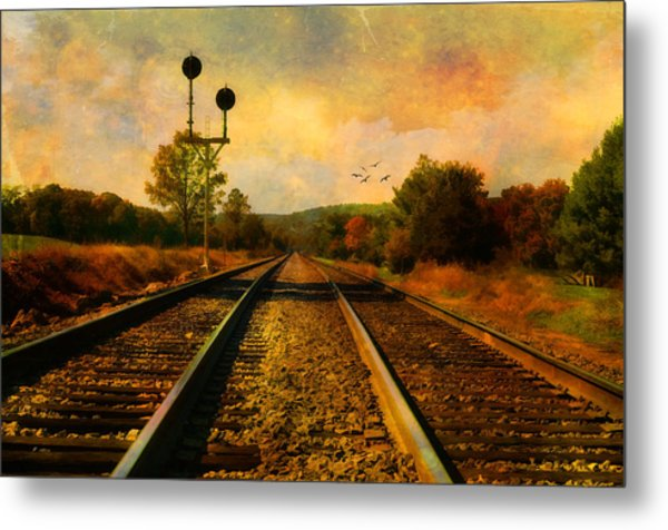 Country Tracks Metal Print by Kathy Jennings
