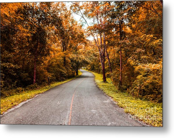 Countryside Road In Autumn Metal Print by Mongkol Chakritthakool