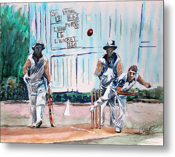 County Cricket Metal Print