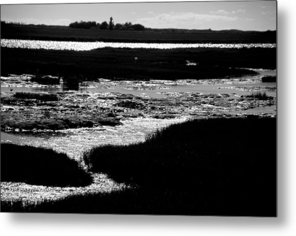 Covering The Marshes Metal Print by Jez C Self