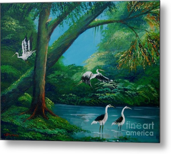 Cranes On The Swamp Metal Print