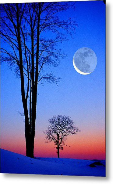 Crescent Through Trees Metal Print