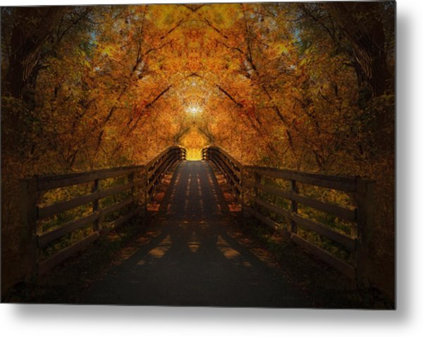 Crossing Over - Color Metal Print