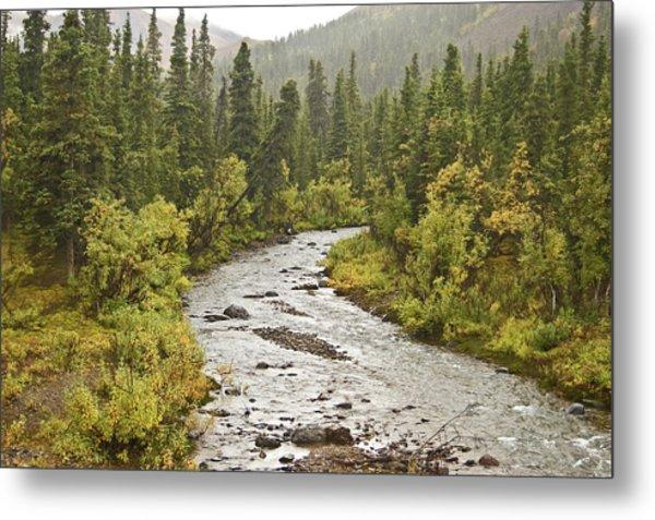 Crossing The Stream In Denali Metal Print by Jim and Kim Shivers