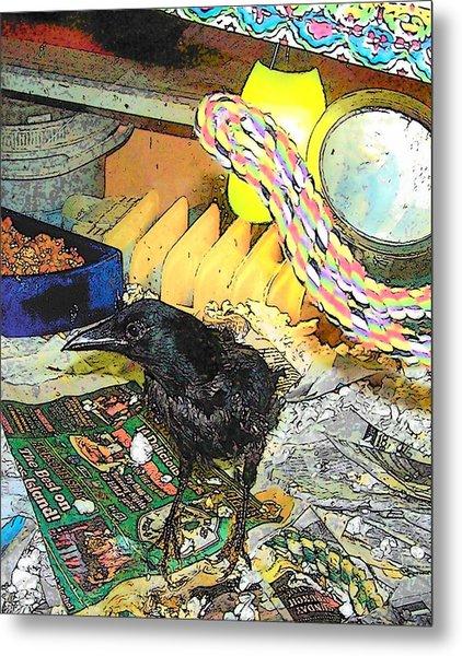 Crow In Rehab Metal Print