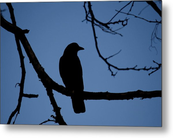 Crow Silhouette Metal Print