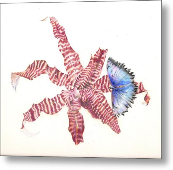 Cryptanthus With Butterfly Metal Print