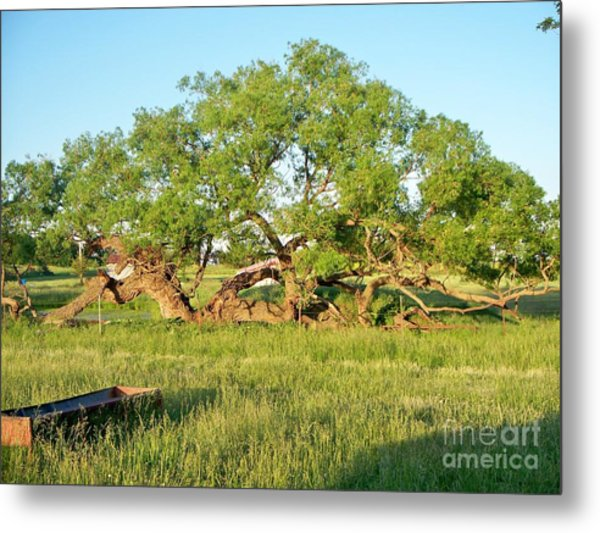 Dad's Tree Metal Print