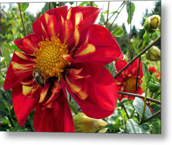 Dahlia Make My Day Metal Print