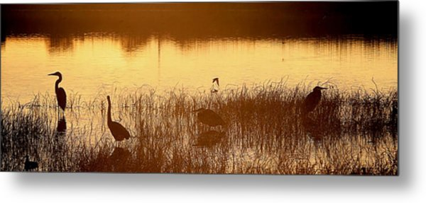 Days End At The Wetlands Metal Print