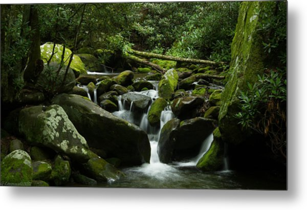 Deep In The Forest Lies A Waterfall   Metal Print by Glenn Lawrence