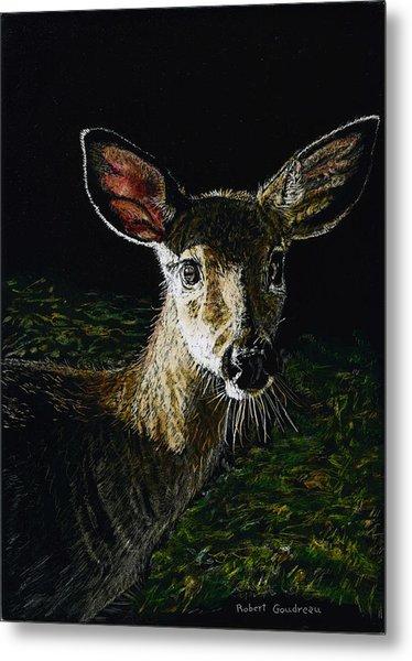 Deer Portrait Metal Print by Robert Goudreau