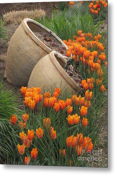 Denver Botanic Planters Metal Print