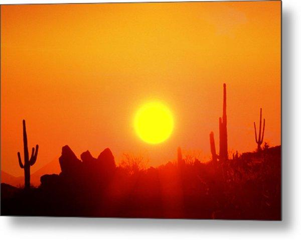 Desert Sun Metal Print by Robert Wiley