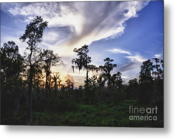 Destrehan Swamp Sunset Metal Print by Jeanne  Woods