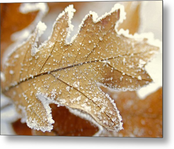 Diamonds And Rust Metal Print by The Forests Edge Photography - Diane Sandoval