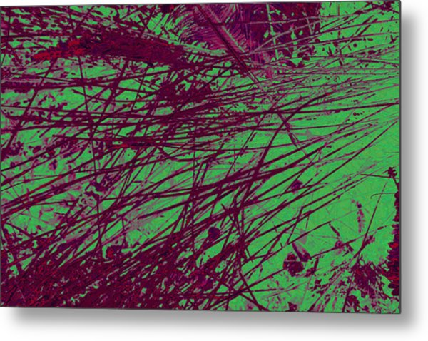 Digitized Nature Metal Print by Colleen Cannon