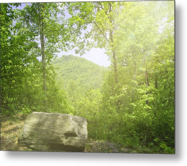 Distant View Metal Print by Cheryl Butler