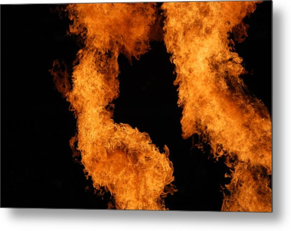 Divine Fire Metal Print by Michelle Visconti