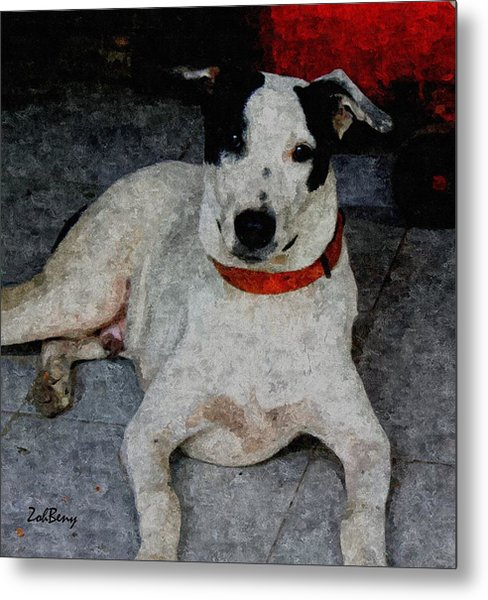 Dog Paintings  Metal Print by Zoh Beny
