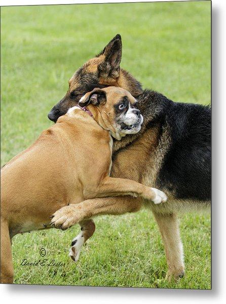 Doggie Love Metal Print