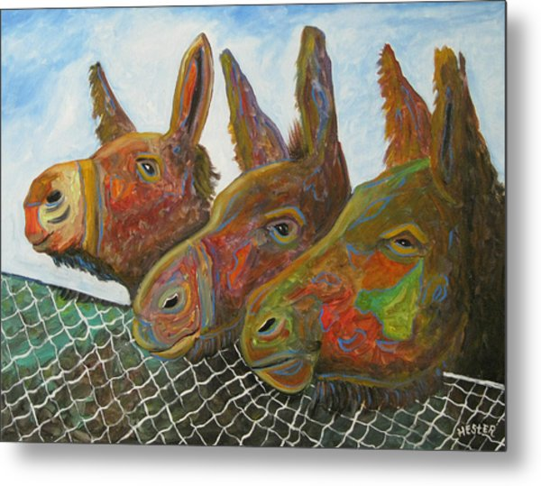 Donkey Doo Metal Print by Don  Hester