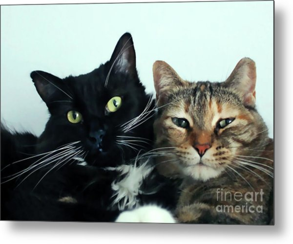 Double Trouble 1 Metal Print