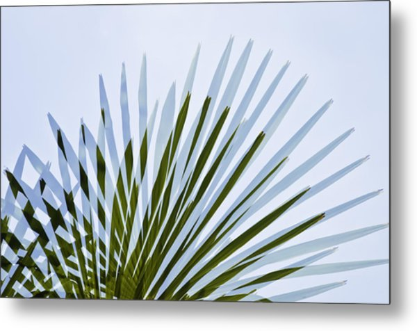 Metal Print featuring the photograph Double Vision by Sherri Meyer