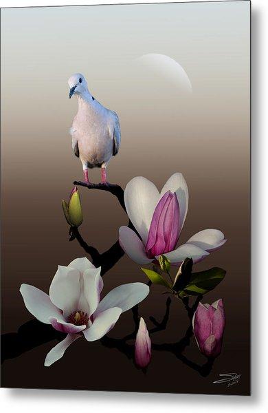 Dove And Magnolia Metal Print
