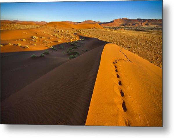 Down Dune Metal Print