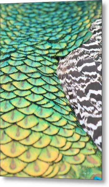Dragon Scales Metal Print
