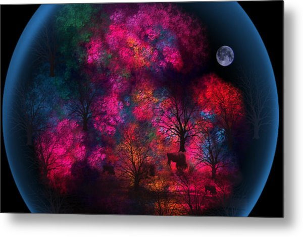 Dreamy Little Forest Metal Print