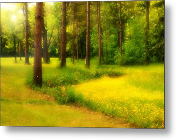 Dreamy Meadow Metal Print