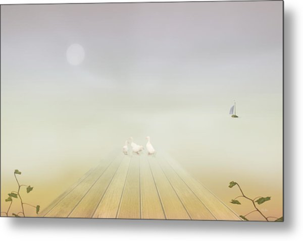 Ducks On The Dock Metal Print by Tom York Images