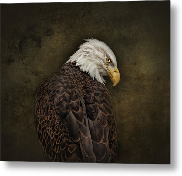 Eagle Profile Metal Print