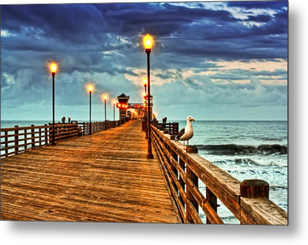 Early Bird Metal Print by Donna Pagakis