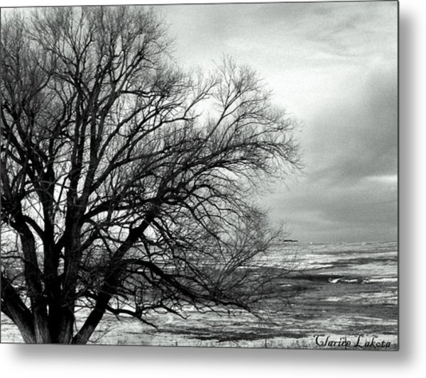 Eastern Plains Of Colorado Metal Print
