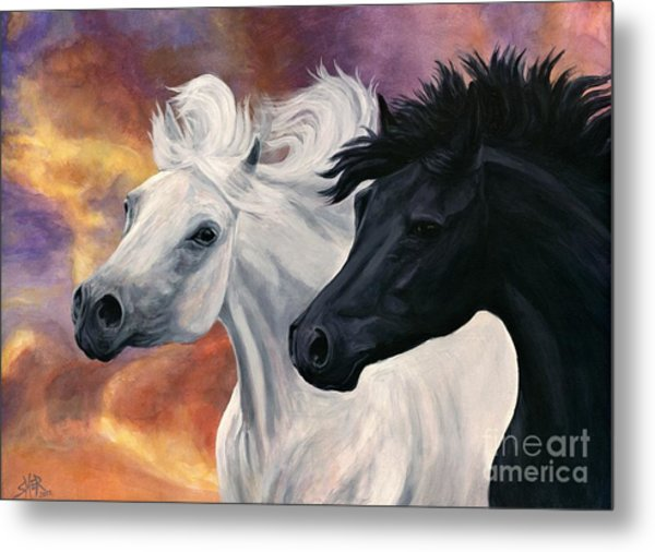 Ebony And Ivory Metal Print