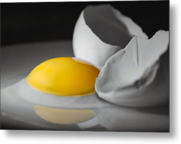 Egg And Black And White Metal Print