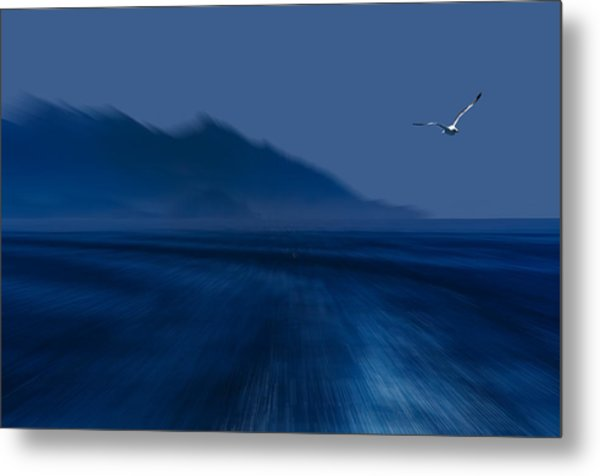 Elba Island - Flying Away - Ph Enrico Pelos Metal Print
