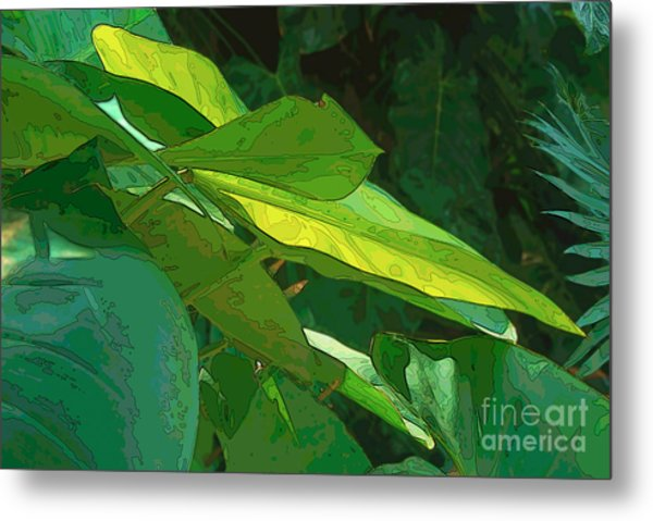 Elephant Ears 2 Metal Print