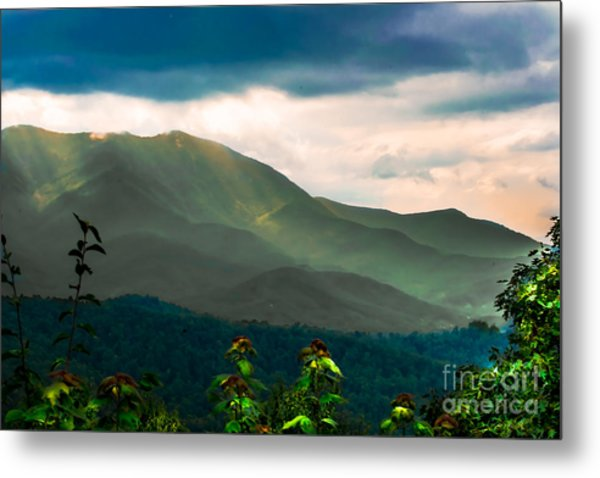 Emerald And Gold Metal Print by Scott Hervieux