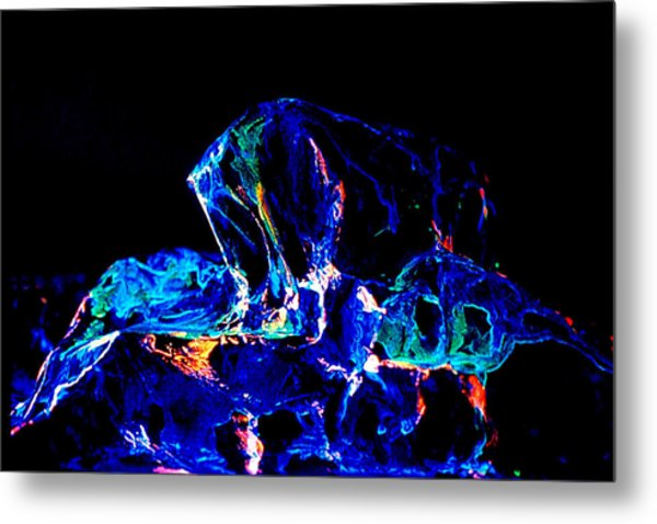 Emergence Metal Print by Colleen Cannon