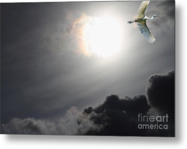 Eternity Metal Print by Wingsdomain Art and Photography